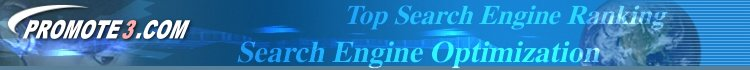 Search Engine Optimization Top Ranking Search Engine Positioning
